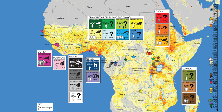 What factors might have led to the emergence of Ebola in West Africa?