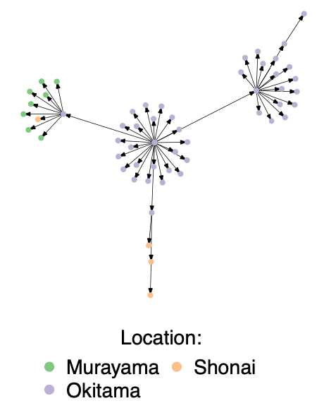 Measles transmission tree